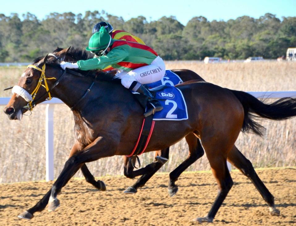 vaal horse racing results